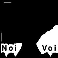 NOI PER VOI logo